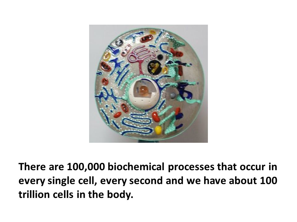 There are 100,000 biochemical processes that occur in every single cell, every second and we have about 100 trillion cells in the body.