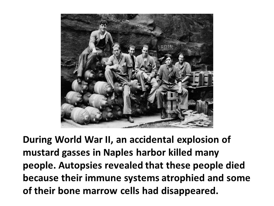 During World War II, an accidental explosion of mustard gasses in Naples harbor killed many people. Autopsies revealed that these people died because their immune systems atrophied and some of their bone marrow cells had disappeared.