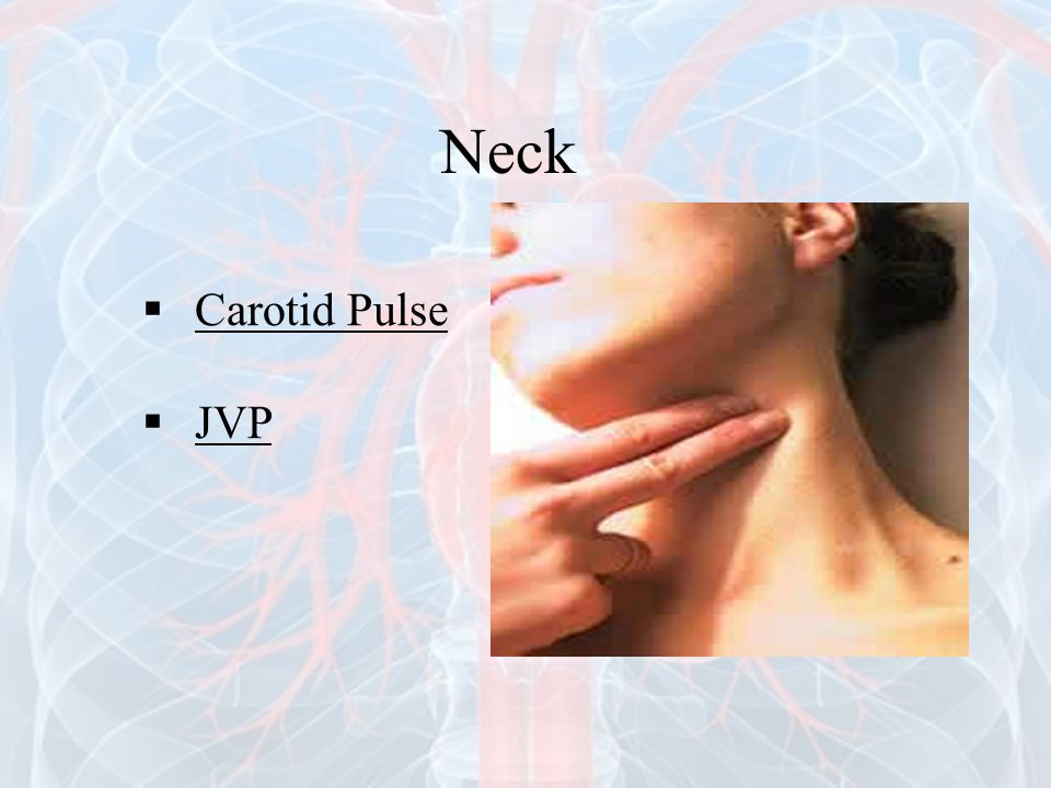 Neck Carotid Pulse JVP