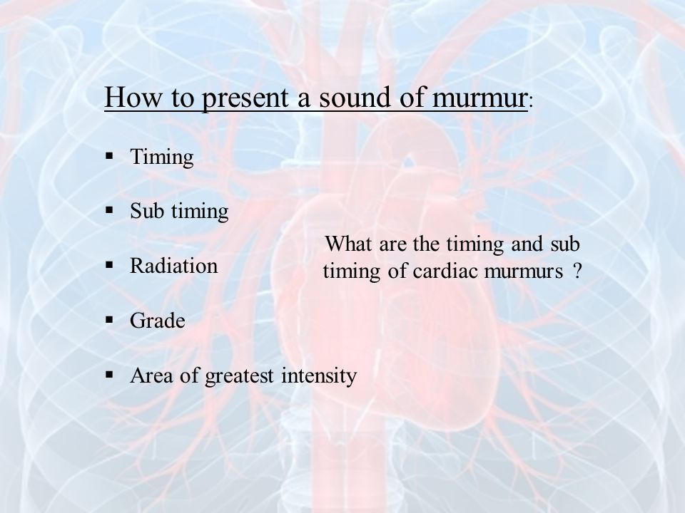 What are the timing and sub timing of cardiac murmurs
