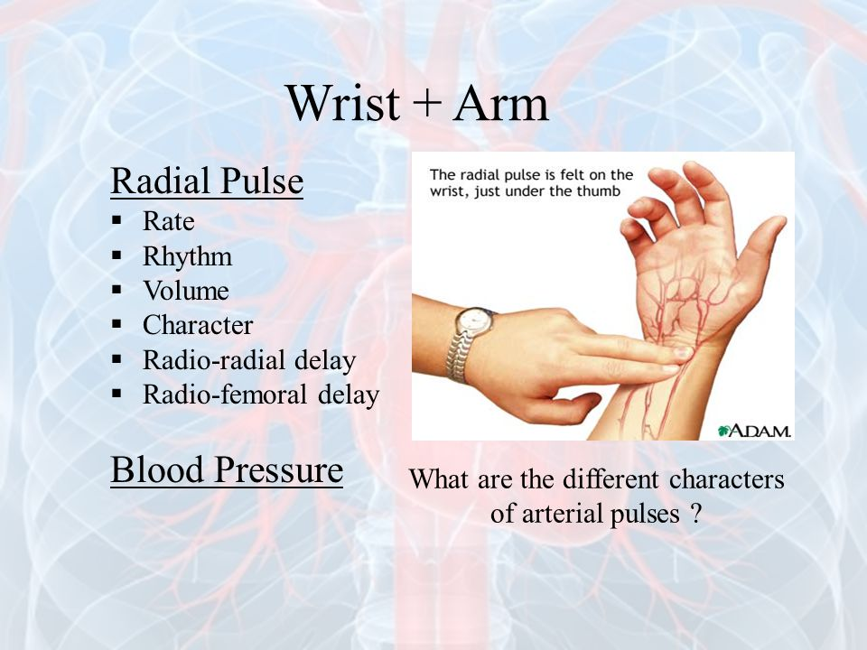 What are the different characters of arterial pulses