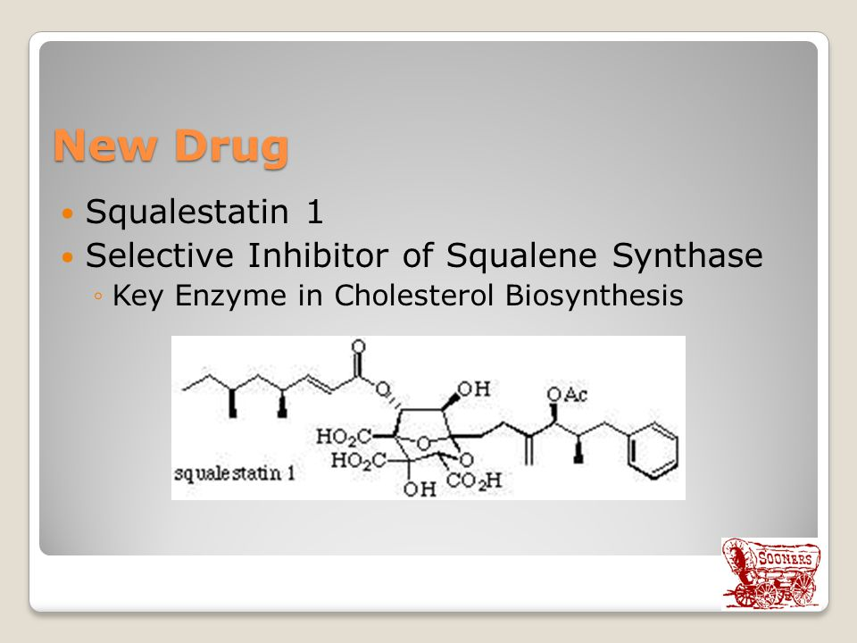 New Drug Squalestatin 1 Selective Inhibitor of Squalene Synthase