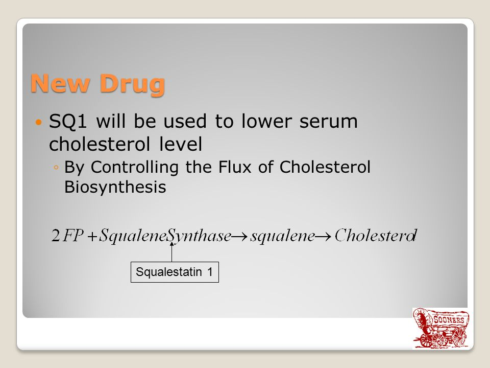 New Drug SQ1 will be used to lower serum cholesterol level