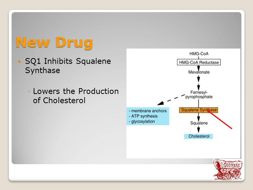 New Drug SQ1 Inhibits Squalene Synthase