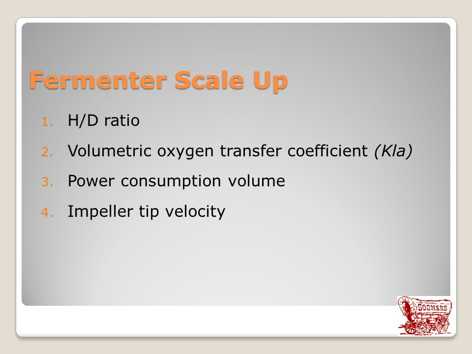 Fermenter Scale Up H/D ratio
