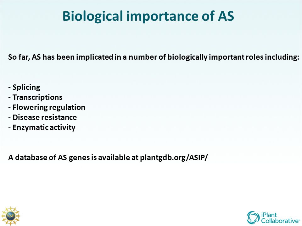 Biological importance of AS