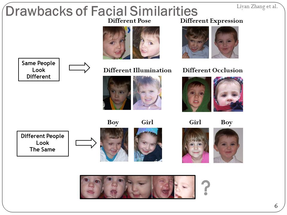 Drawbacks of Facial Similarities