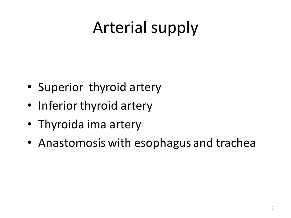Arterial supply Superior thyroid artery Inferior thyroid artery