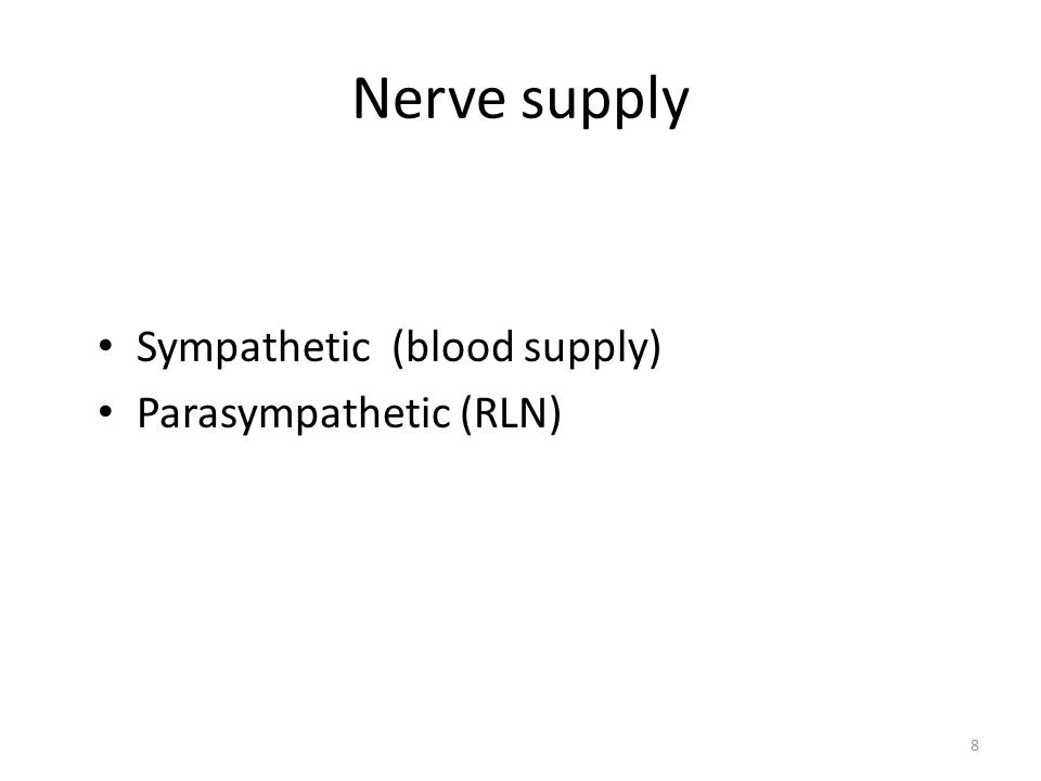Nerve supply Sympathetic (blood supply) Parasympathetic (RLN)