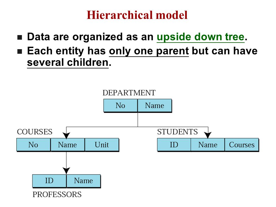 Hierarchical model Data are organized as an upside down tree.