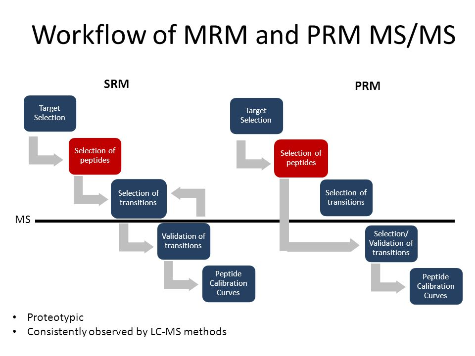 Workflow of MRM and PRM MS/MS