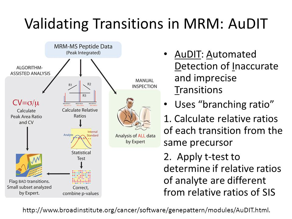 Validating Transitions in MRM: AuDIT