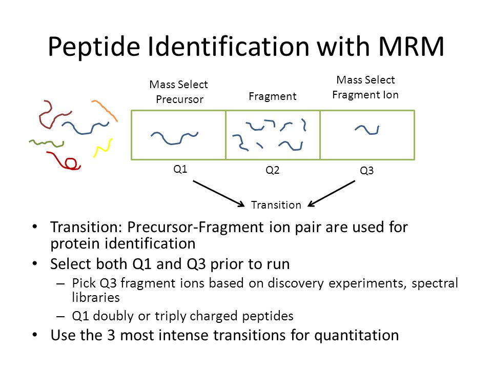 Peptide Identification with MRM