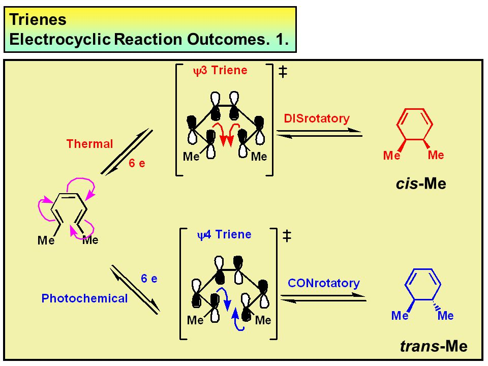 Trienes Electrocyclic Reaction Outcomes. 1. cis-Me trans-Me