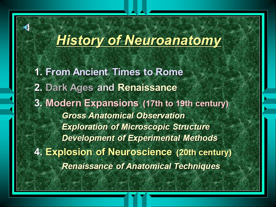 History of Neuroanatomy