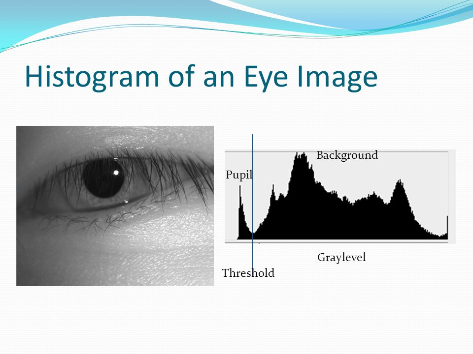 Histogram of an Eye Image