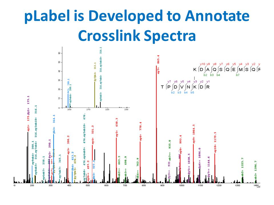pLabel is Developed to Annotate Crosslink Spectra