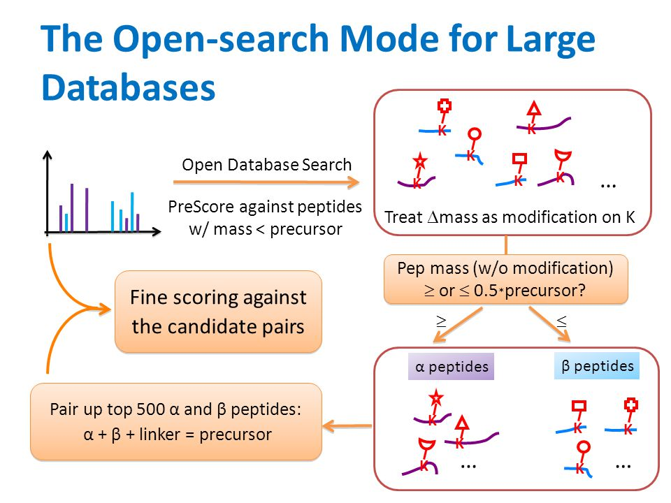The Open-search Mode for Large Databases
