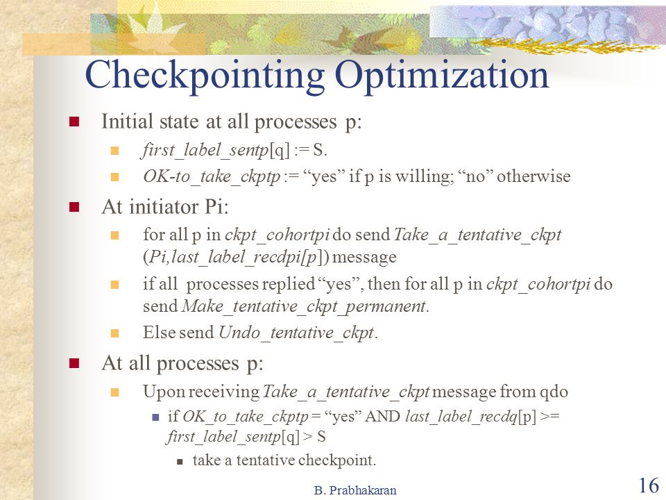 Checkpointing Optimization