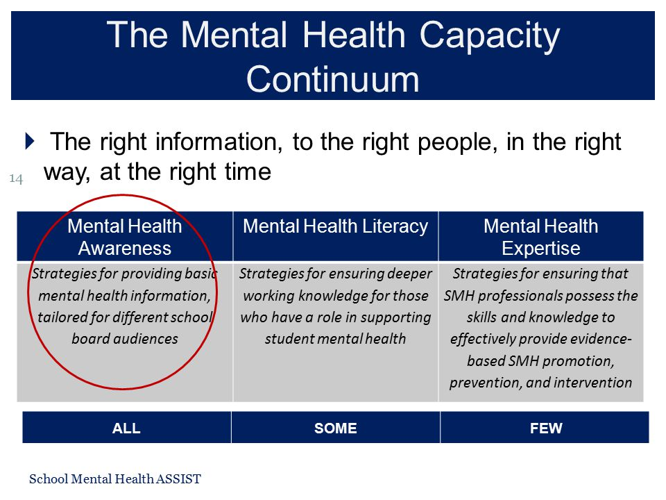 The Mental Health Capacity Continuum