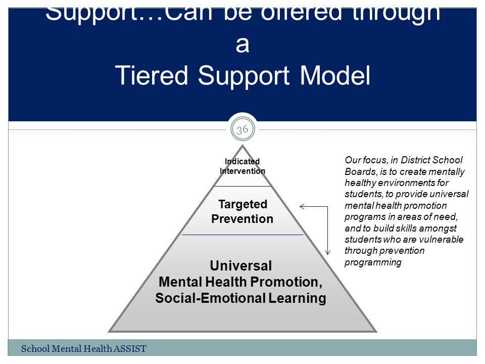 Support…Can be offered through a Tiered Support Model