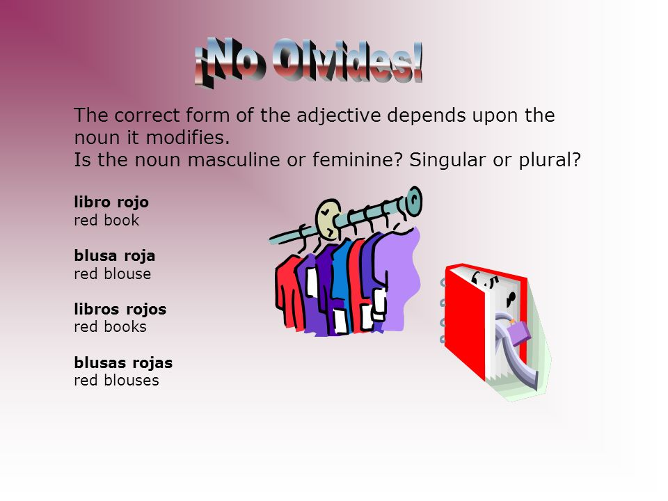 ¡No Olvides! The correct form of the adjective depends upon the noun it modifies. Is the noun masculine or feminine Singular or plural
