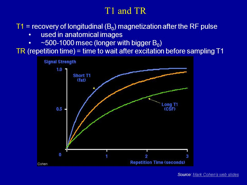 T1 and TR T1 = recovery of longitudinal (B0) magnetization after the RF pulse. used in anatomical images.