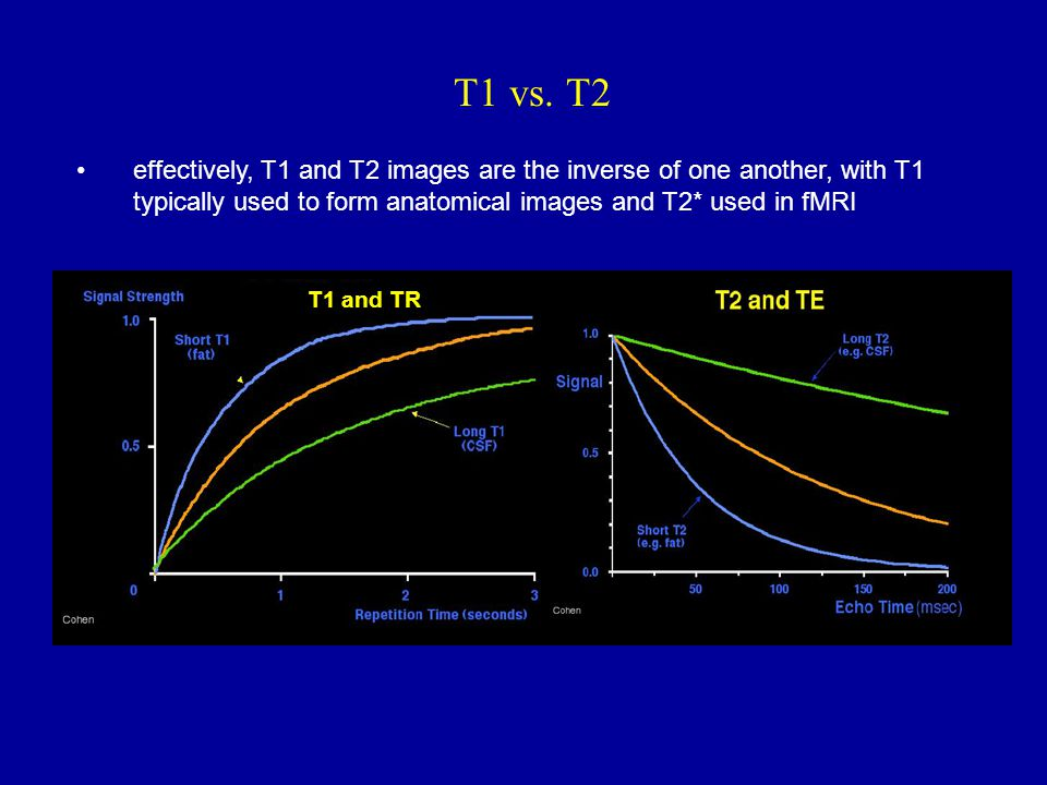 T1 vs. T2 effectively, T1 and T2 images are the inverse of one another, with T1 typically used to form anatomical images and T2* used in fMRI.