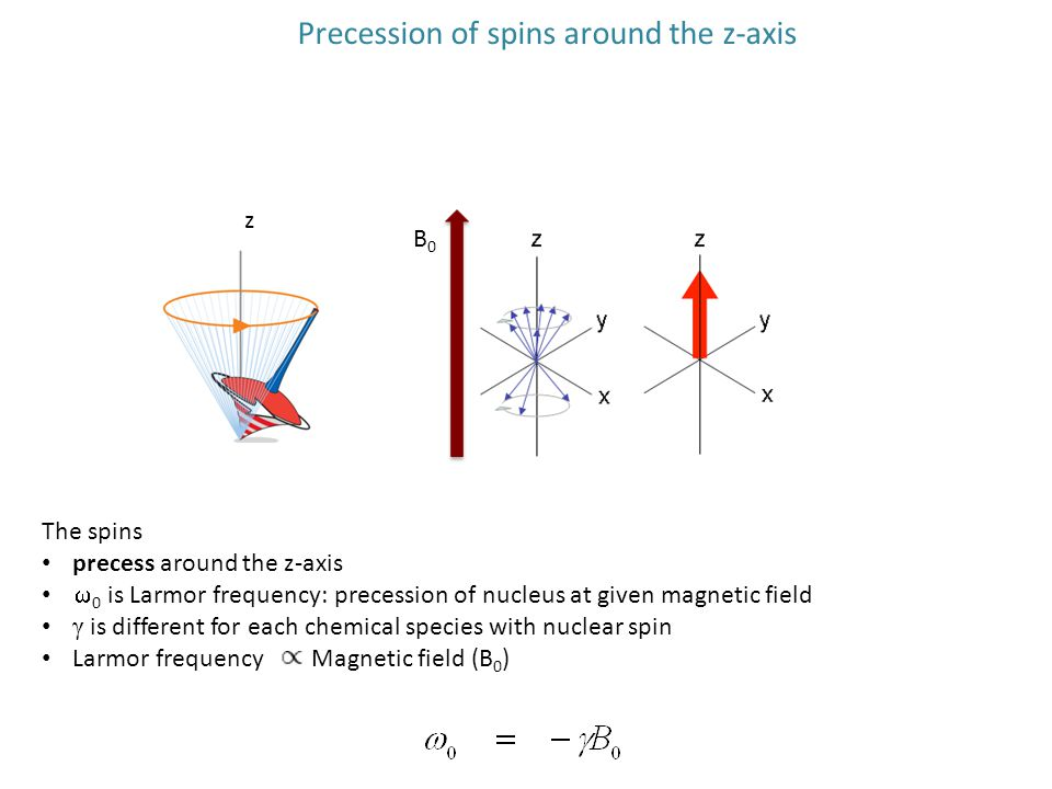Precession of spins around the z-axis