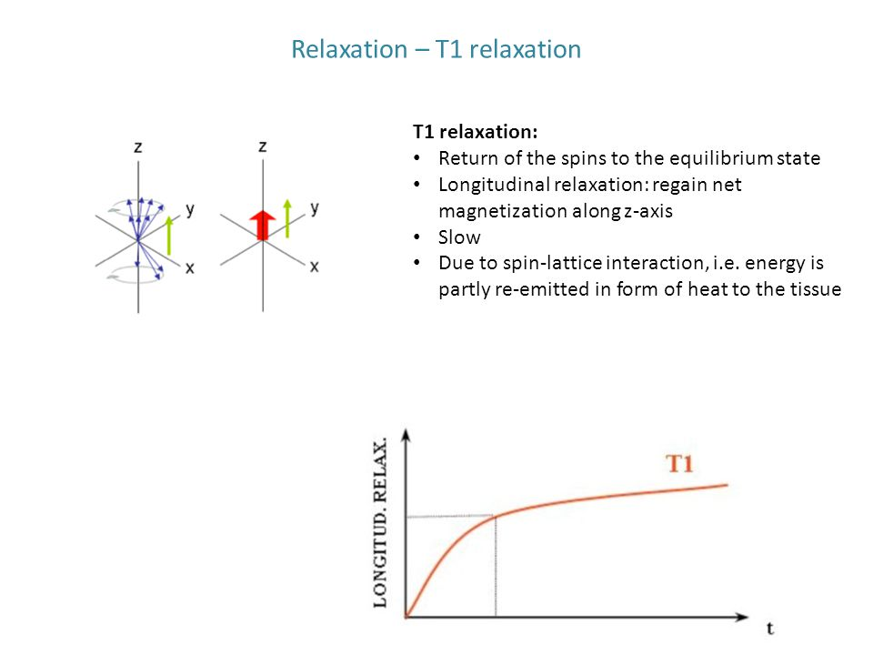 Relaxation – T1 relaxation