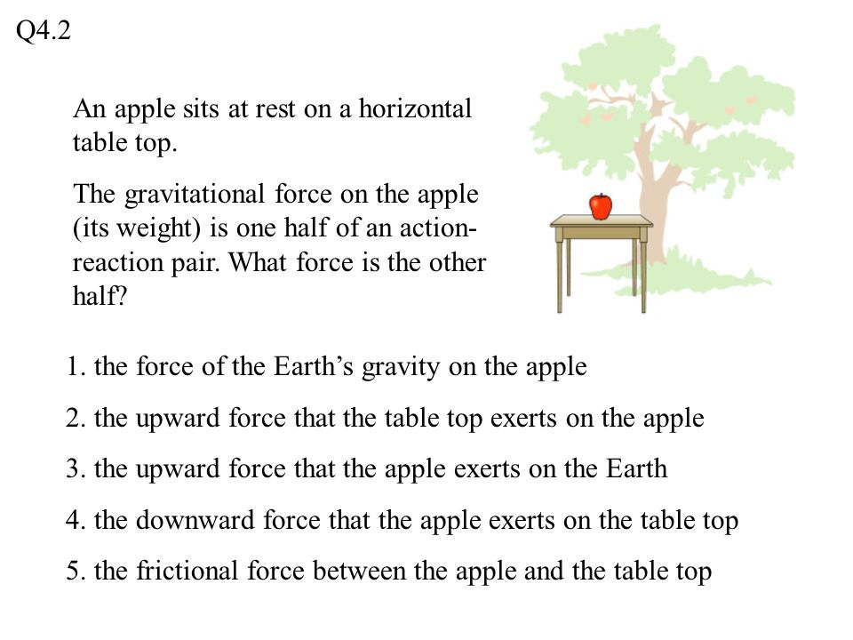 Q4.2 An apple sits at rest on a horizontal table top.