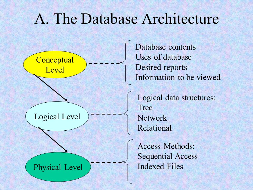 A. The Database Architecture
