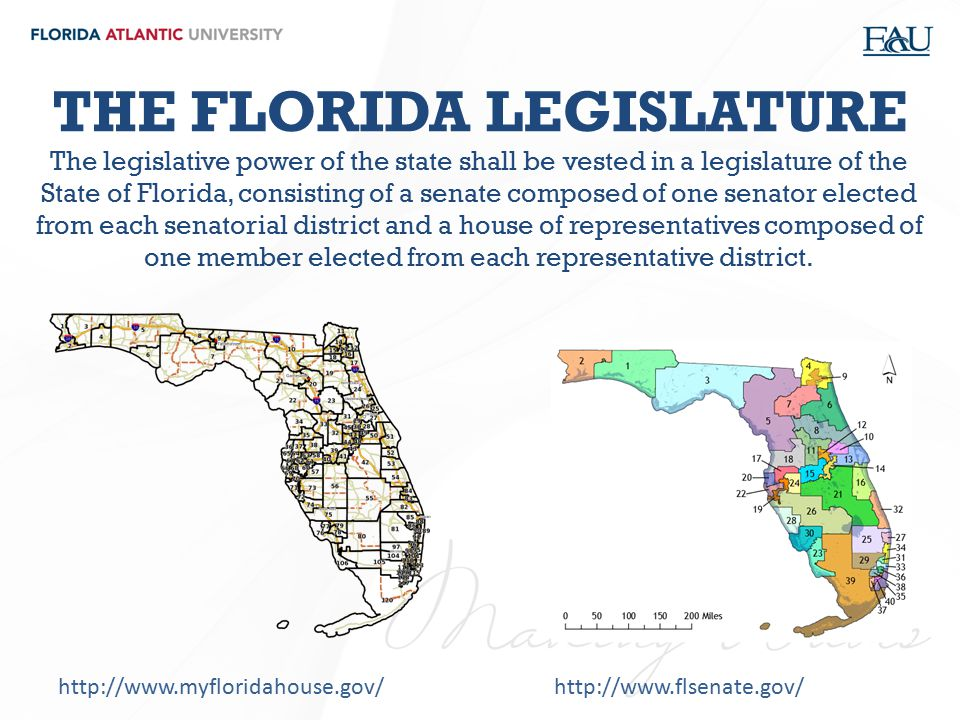 THE FLORIDA LEGISLATURE The legislative power of the state shall be vested in a legislature of the State of Florida, consisting of a senate composed of one senator elected from each senatorial district and a house of representatives composed of one member elected from each representative district.
