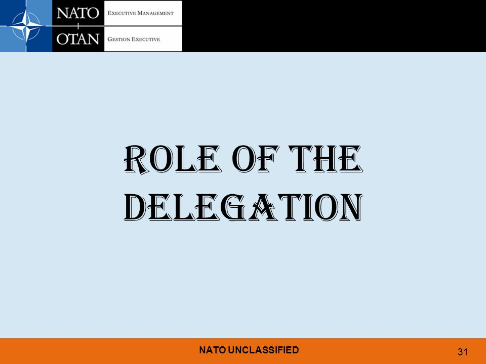 11/04/2017 ROLE OF THE DELEGATION