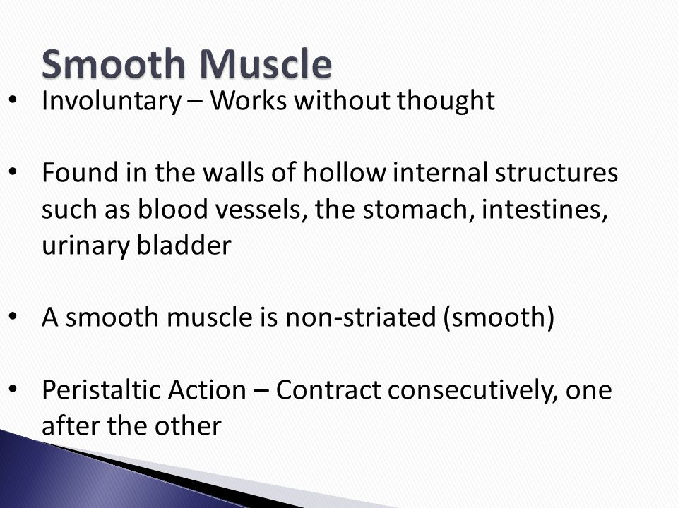 Smooth Muscle Involuntary – Works without thought