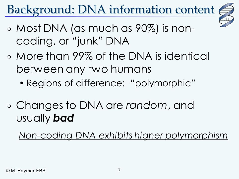 Background: DNA information content