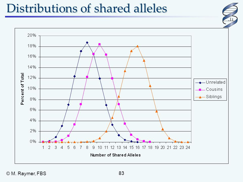 Distributions of shared alleles