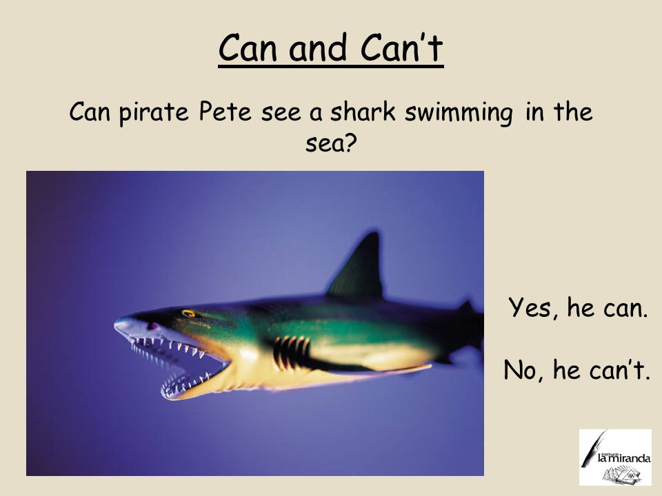 Can and Can't Can pirate Pete see a shark swimming in the sea