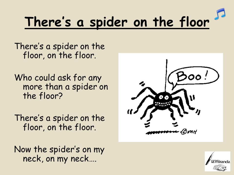 There's a spider on the floor