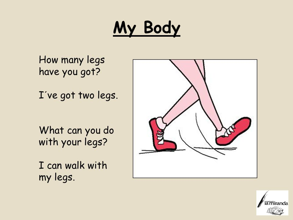 My Body How many legs have you got I´ve got two legs.