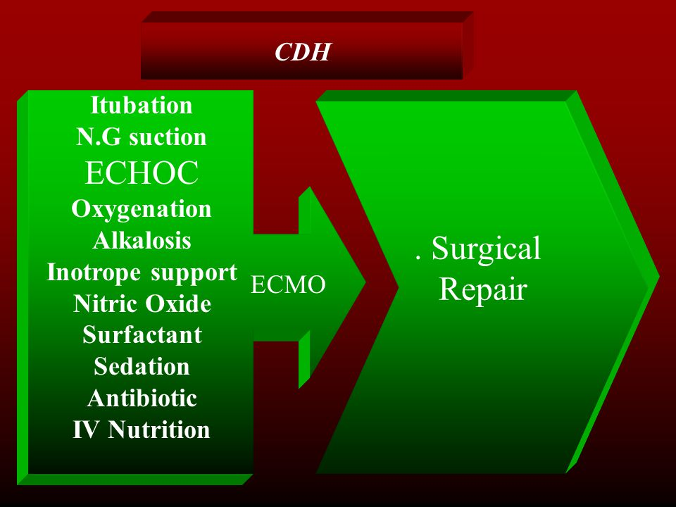 ECHOC . Surgical Repair CDH Itubation N.G suction Oxygenation