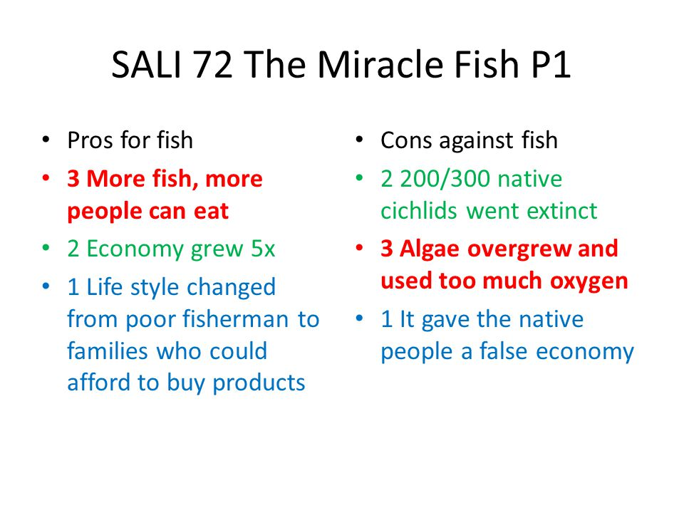 SALI 72 The Miracle Fish P1 Pros for fish