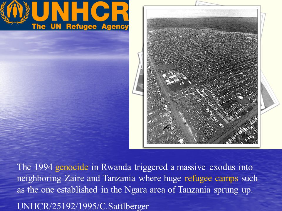 The 1994 genocide in Rwanda triggered a massive exodus into neighboring Zaire and Tanzania where huge refugee camps such as the one established in the Ngara area of Tanzania sprung up.