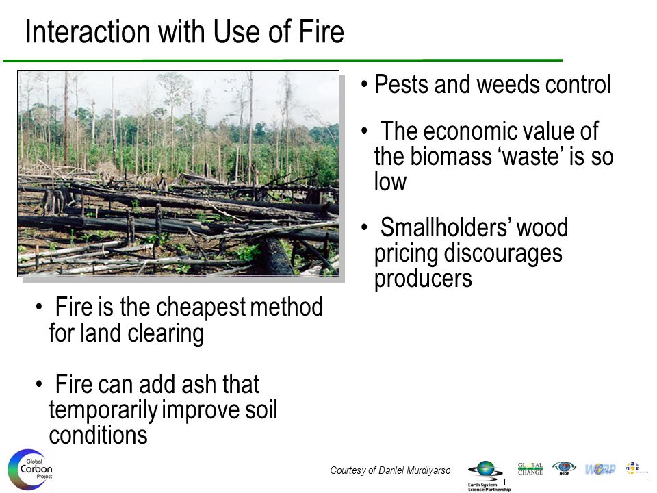 Interaction with Use of Fire