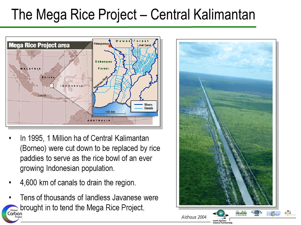 The Mega Rice Project – Central Kalimantan