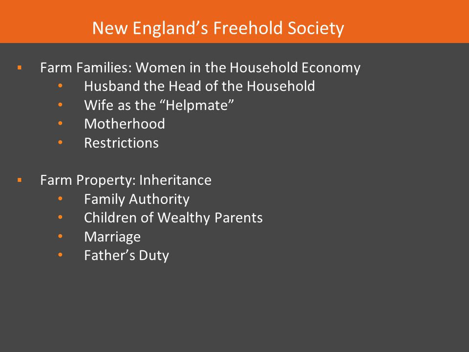New England's Freehold Society