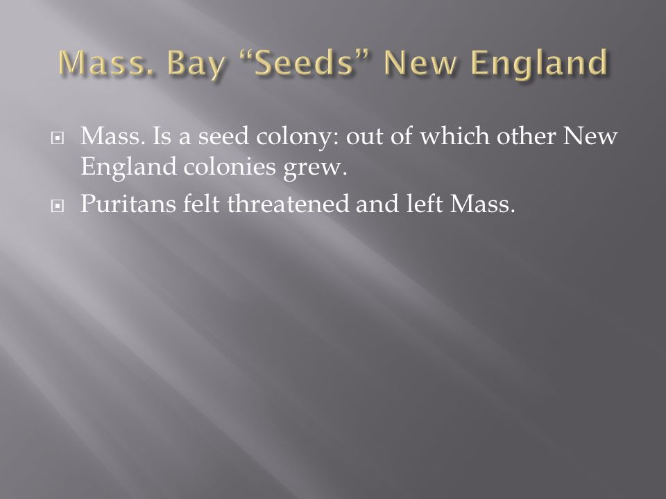 Mass. Bay Seeds New England