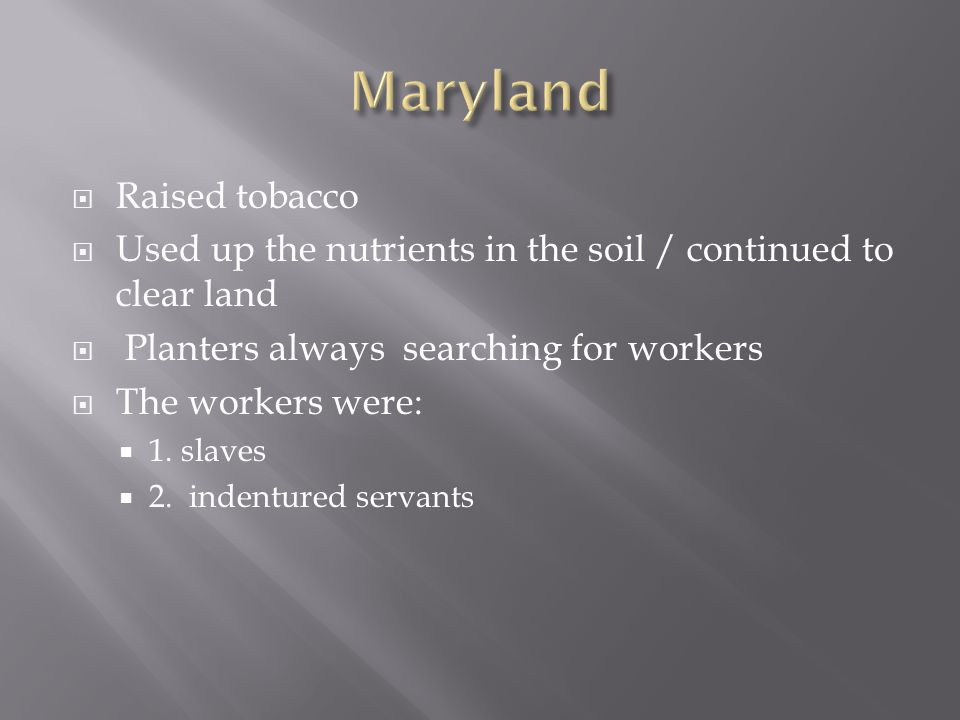 Maryland Raised tobacco