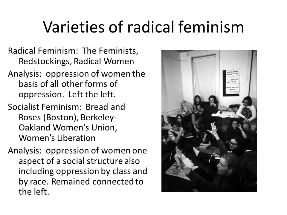 Varieties of radical feminism