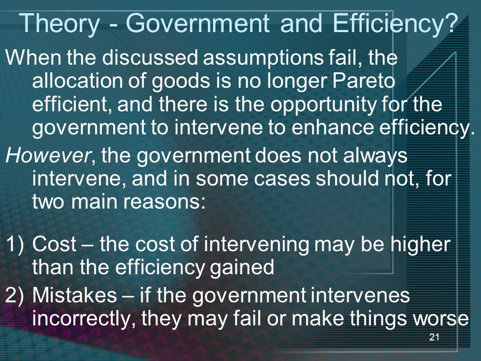 Theory - Government and Efficiency